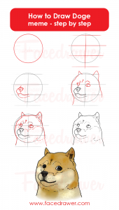 How To Draw Doge Meme Step By Step Infographic Facedrawer